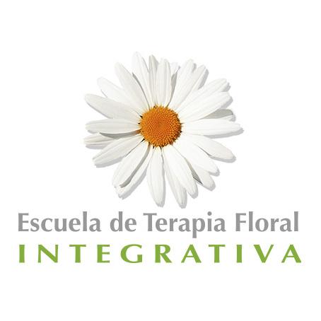 Accede a nuestra WEB