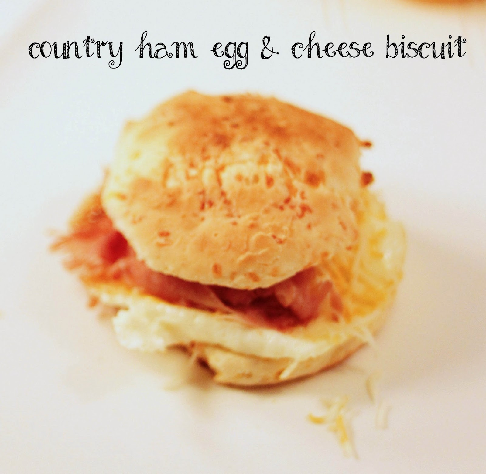 Country Ham And Cheese Biscuit Bread Recipe — Dishmaps