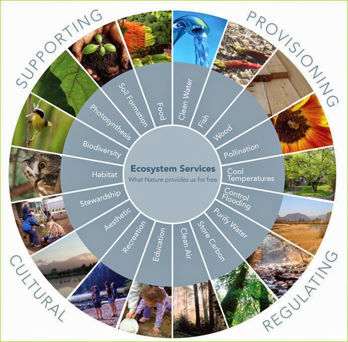"ecosystem components Ecosystem restoration is the ""process of assisting the recovery of an ecosystem that has been degraded, damaged or destroyed"" (ser primer, 2004."