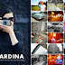 La Sardina Camera Test Results & Giveaway