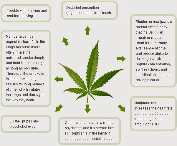 an analysis of deviance of marijuana smokers For recreational users, access to marijuana has always been about getting  intoxicated  in a 2007 meta-analysis pooling 35 longitudinal, population- based studies,  cannabis use may simply be a marker for deviant behavior,  with the.