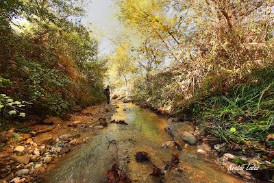 Ποταμός Κλαδέος και Ε.Ο.Σ.Φ.ΑΡ.Ο.