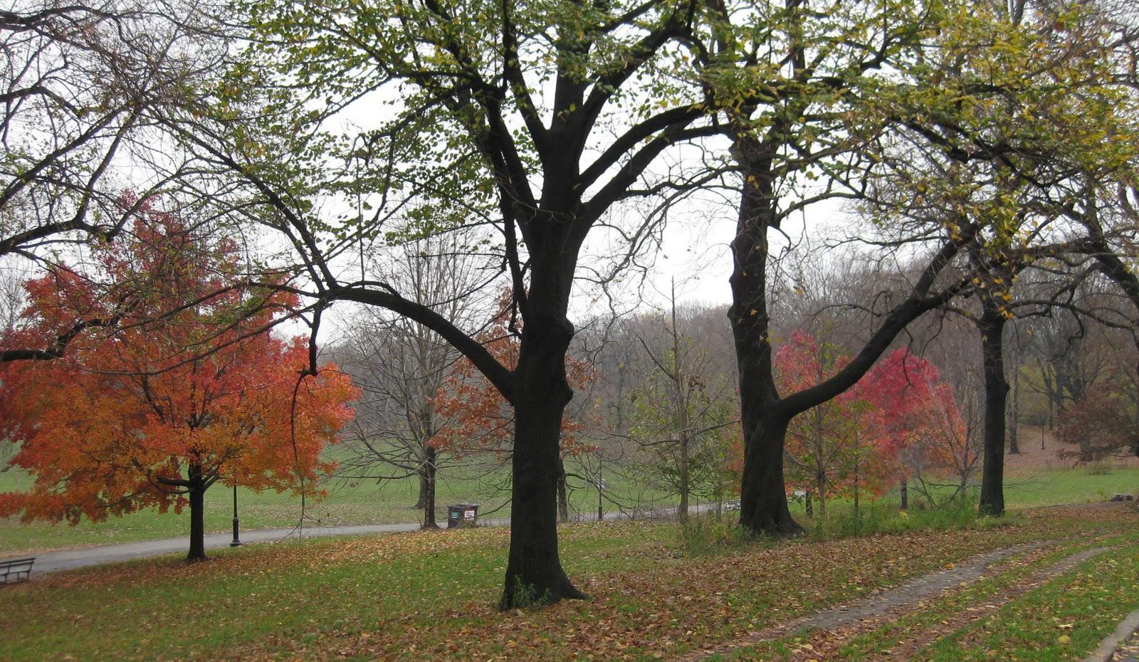 Enjoy the beautiful sights at prospect park new york photos boomsbeat for Prospect park lefferts gardens