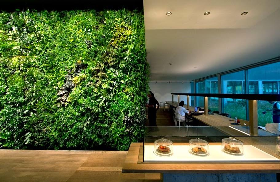 how to make a moss wall garden