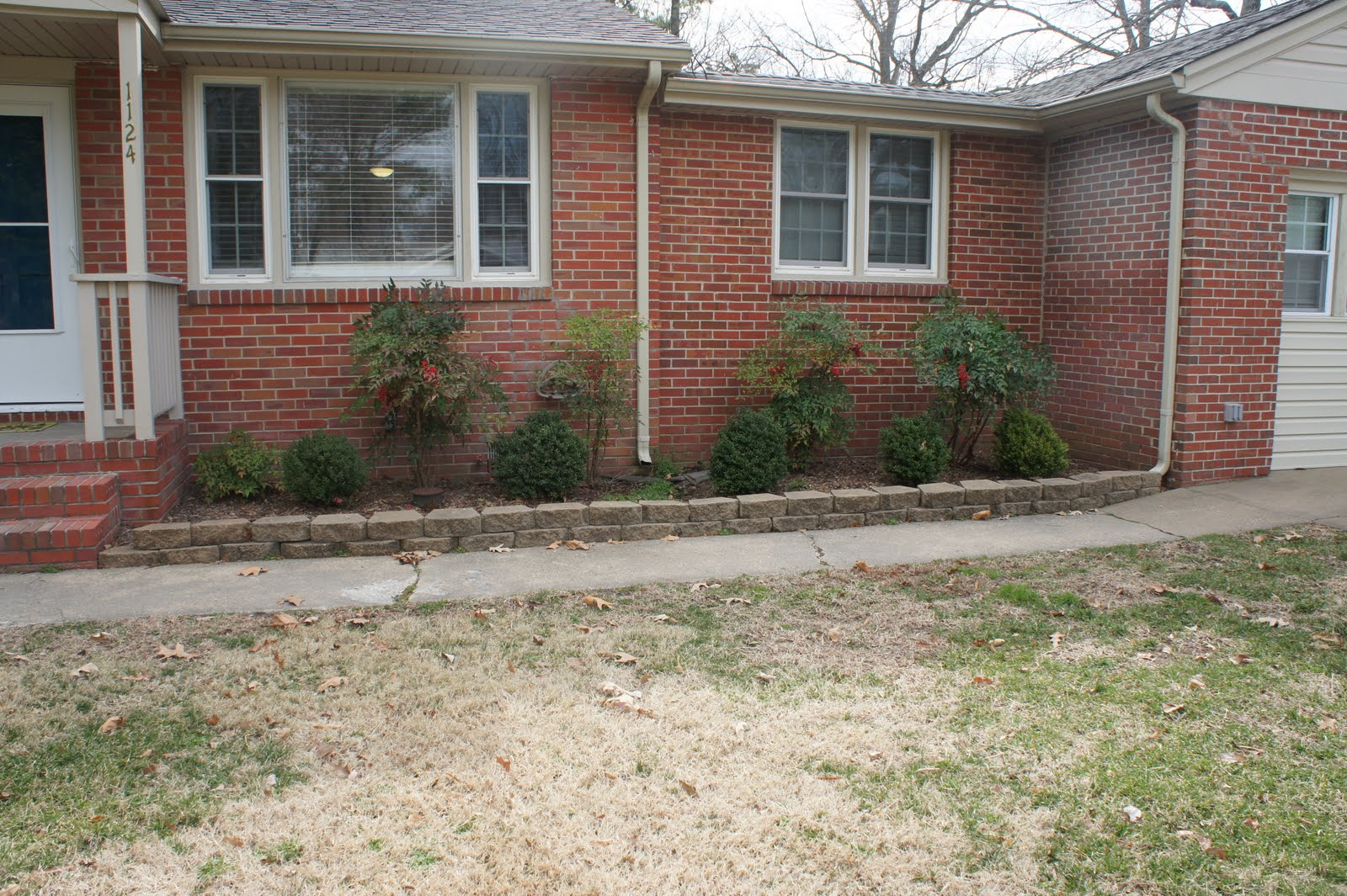 Virginia beach housewife landscaping for dummies for Landscaping for dummies