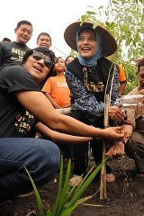 Marissa Haque & Ikang Fawzi, Menghijaukan Merapi, FH UGM
