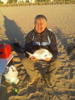 Pesca sargo