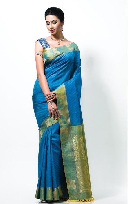 gayathiri wonderful saree ad collections 2012 cute stills