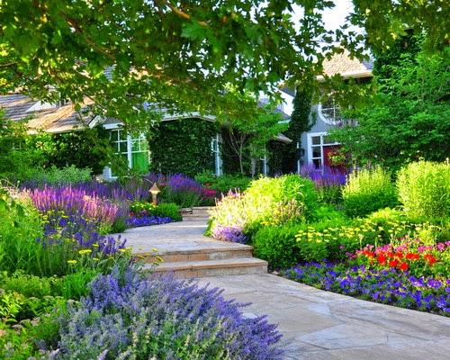 Ide Tamanaman Taman Di Depan Rumah