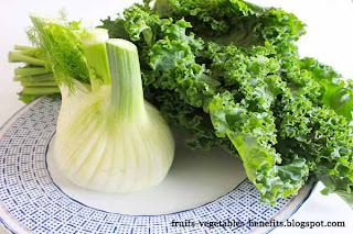 benefits_of_eating fennel_fruits-vegetables-benefits.blogspot.com(2)