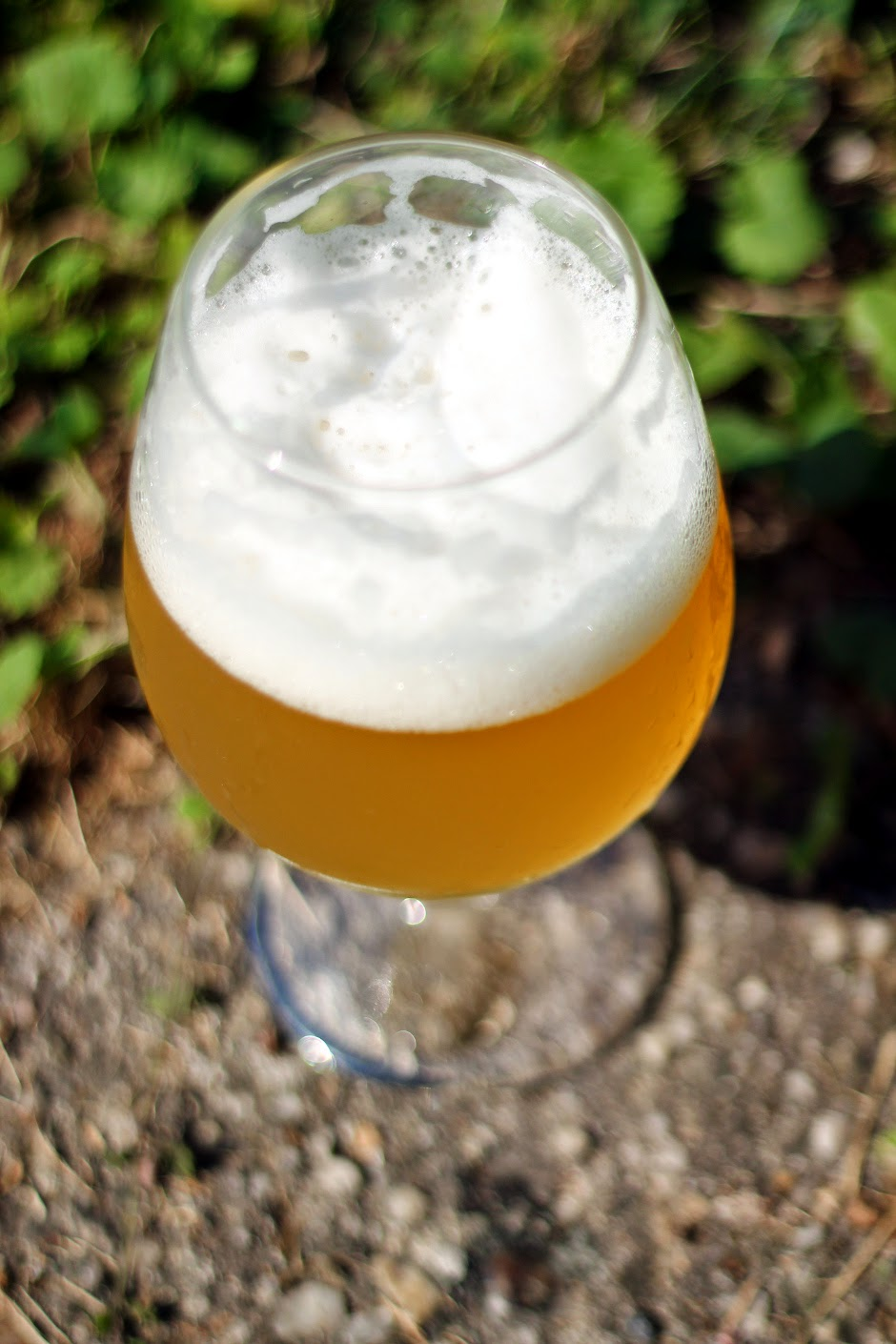 A glass of saison on a sunny afternoon, pretty sight!