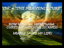 THC = THE HEAVENLY CURE - How Medical Marijuana Nearly Saved Mine (and My Unborn Baby&#39;s) Life!