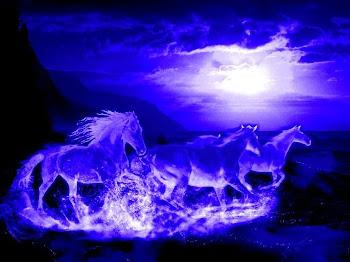 correte nella notte spiriti liberi