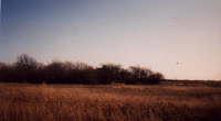 Picture of a field in Peabody, Massachusetts