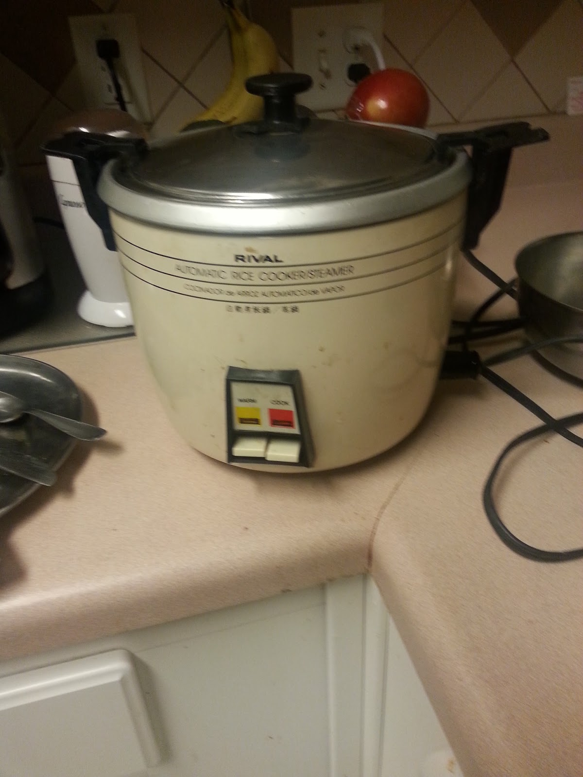 4356 Rival Rice Cookersteamer Four Walls Music Reviews