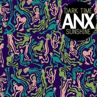 The Top 50 Albums of 2012: 19. Dark Time Sunshine - ANX