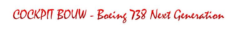 B738NG Project – René Hoep (NL)