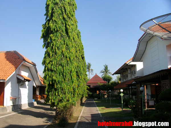 20 Hotel Murah Di Malang