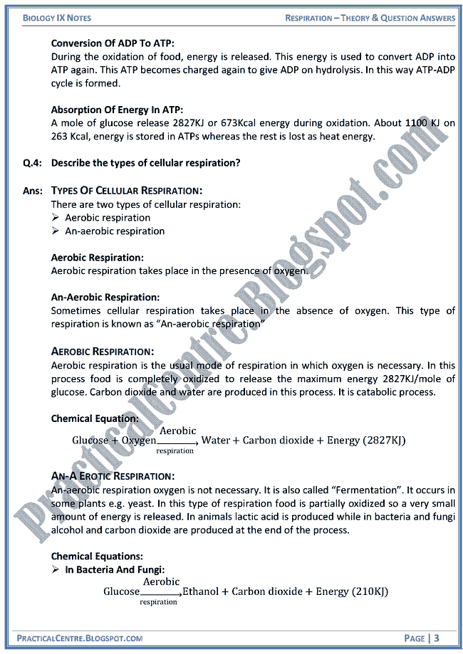 "ap biology essays cell respiration Page 1 ap biology: 2013 exam review ap biology exam review guide ""the price of success is hard work used for energy (cell respiration."