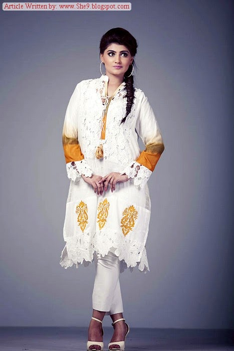 Ayesha Somaya  Winter / Fall Dress Collection 2014