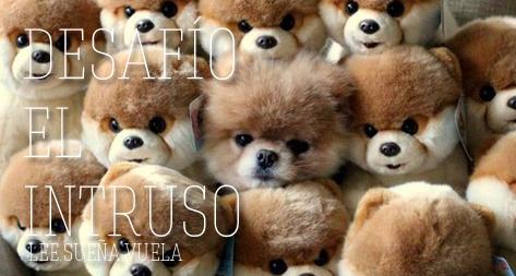 http://leyendo-vuelo.blogspot.com/2014/12/desafio-literario-2015-el-intruso-d.html