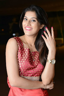 Actress Sabha Picture Gallery in Red Dress at Bunny n Cherry Audio Launch Function 0010.jpg