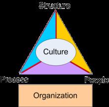 organization's culture