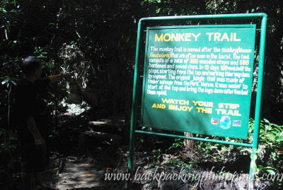 monkey trail palawan underground river