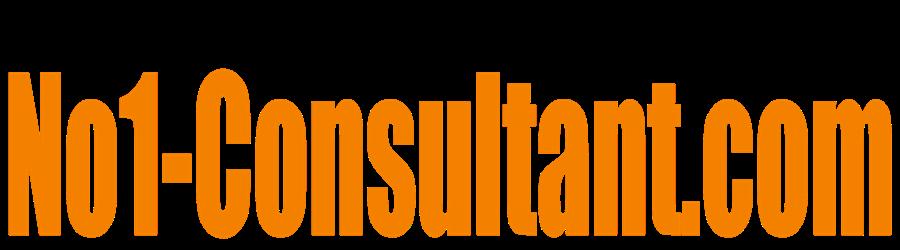 no1-consultant.com