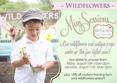 Winston Salem Childrens Photography by Fantasy Photography, LLC