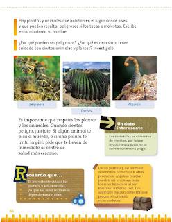 Exploración de la Naturaleza y la Sociedad 1er grado Bloque 2 lección 4 Beneficios y riesgos de plantas y animales