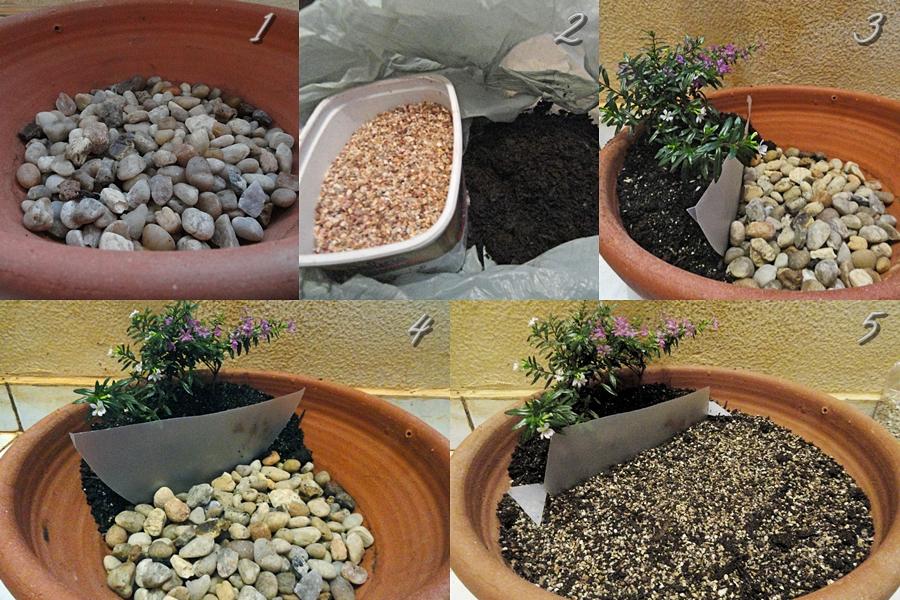 Como+Fazer+Mini+Jardim+em+Vaso+(1)jpg