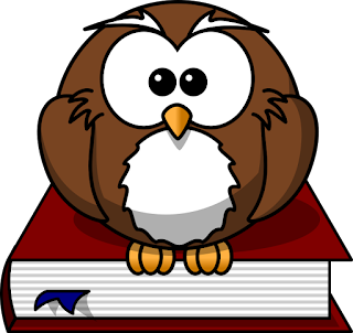 A cartoon owl sits on top of a book.