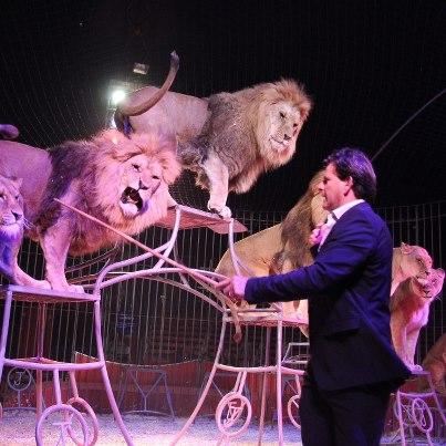 U p a a c nuevo espectaculo del gran circo mundial for Lo ultimo en chismes del espectaculo