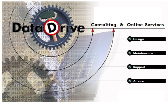 DataDrive Consulting