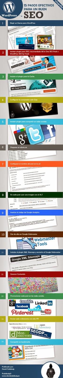 Infografía 15 pasos Efectivos para un buen SEO en WordPress.