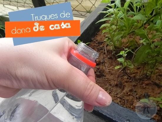 Para aguar as plantas na ausência - e viajar tranquilo (técnica da garrafa pet)