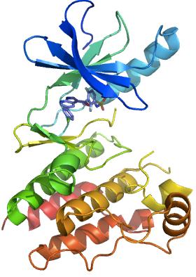 BRAFMAALSGGGGGGAEPGQALFNGDMEPEAGAGAGAAASSAADPAIPEEVWNIKQMIKLTQEHIEALL    Vemurafenib Structure
