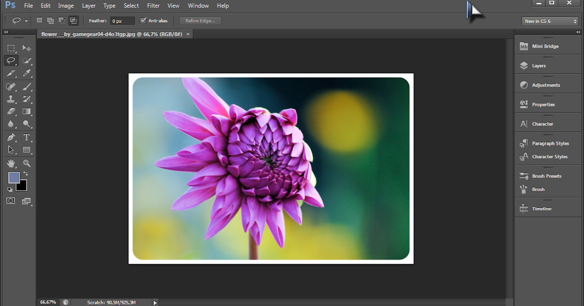 Free pc software download photoshop