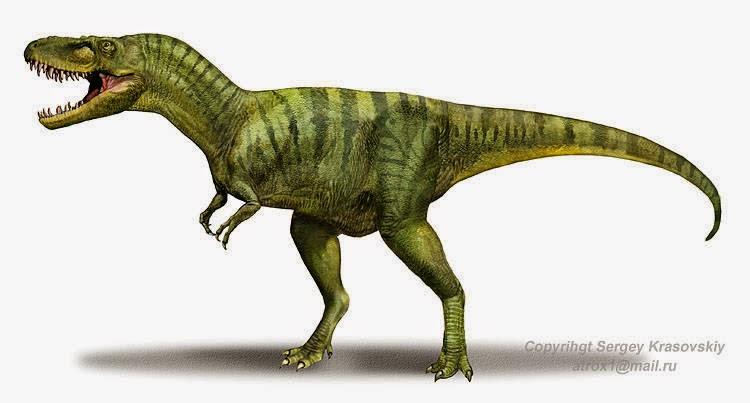 Tyrannosauridae, el último género del mes