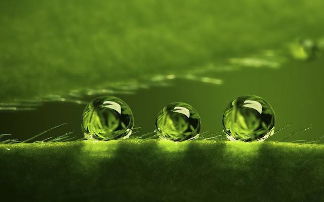 ثلاث قطرات من الماء تظهر بصورة ميكروية بشكل رائع