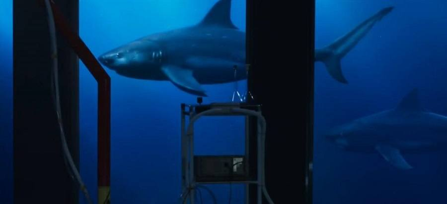 Deep Blue Sea 2 Bluray Download Imagem