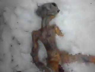Video Penemuan Mayat Alien di Siberia