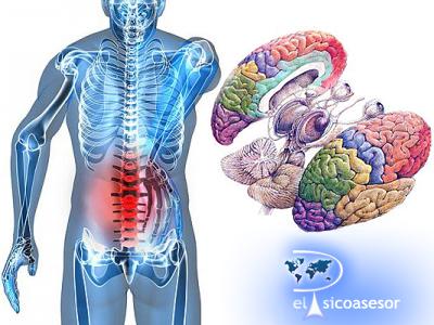 Anatomía y Fisiología del Alma – Sigmund Freud