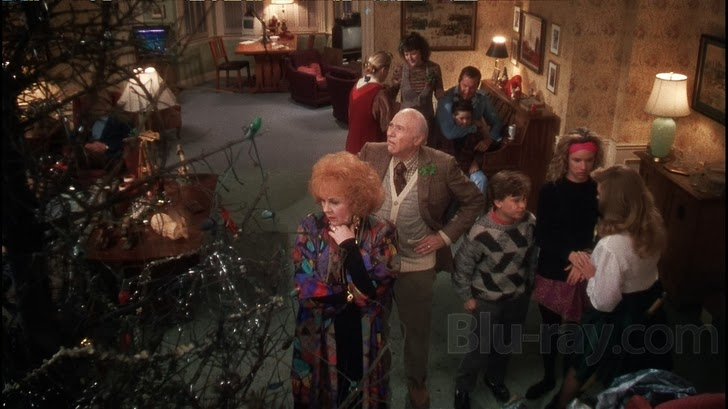 Rose's Life Time Wellness: Why We All Can Learn from Clark Griswold!