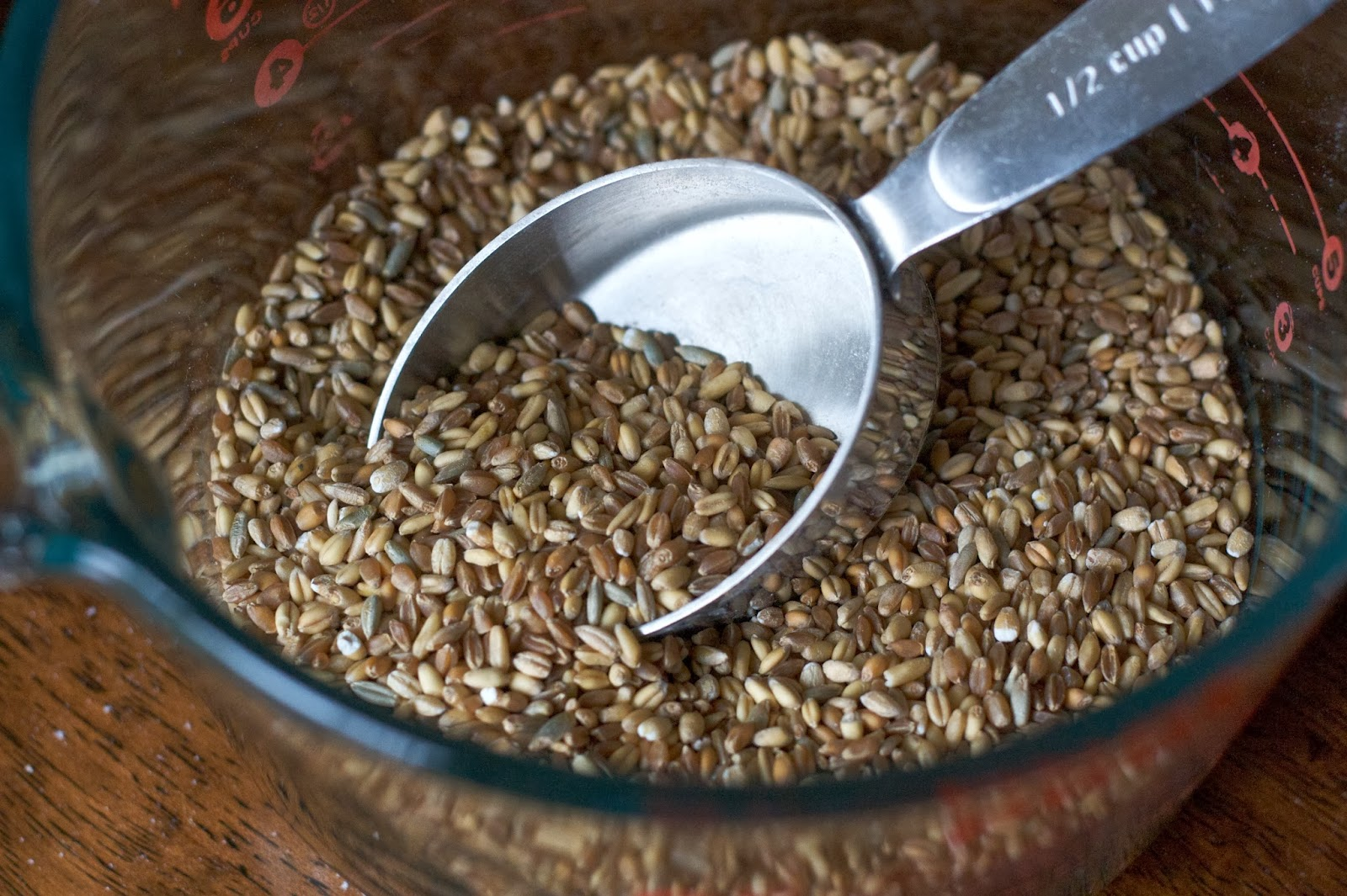 Buckwheat diet: weight correction without harm to the body