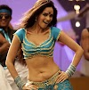 Mallika Sherawat Hot Navel Show Photos 2013