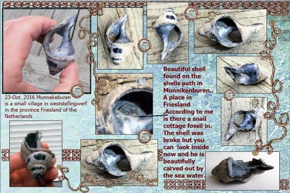 23 okt.2016. loving shell and snail fossil inside