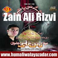 http://ishqehaider.blogspot.com/2013/11/zain-ali-rizvi-nohay-2014.html