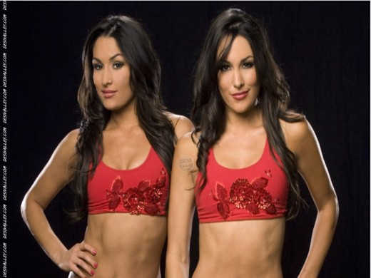 Bella Twins Nikki & Brie Bella Blowing Beauties